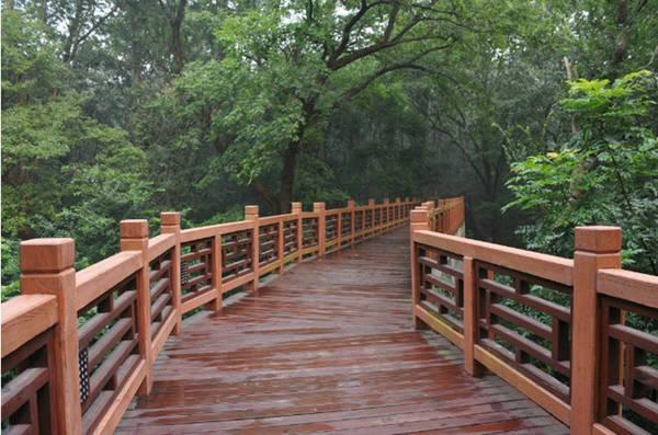 Constant bridge landscape 005#